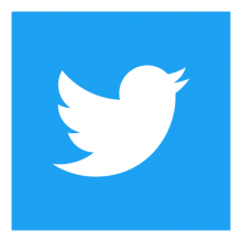 twitter-icon-square-logo-preview