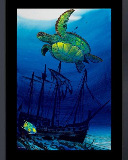 WY28224GC_Sea Turtle Shipwreck_frmd_sm
