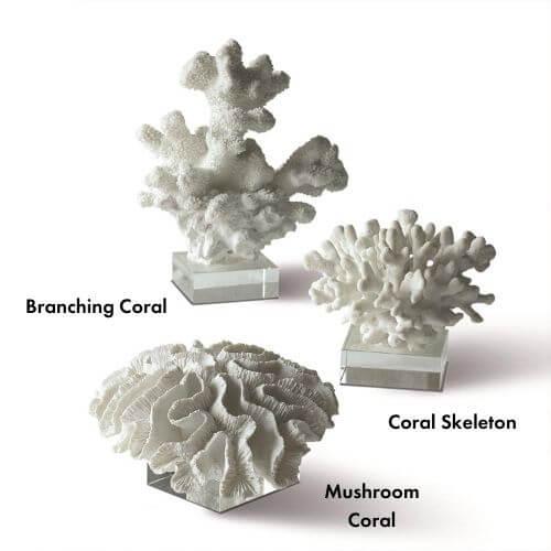 named Coral Sculptures