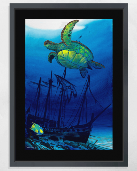 Sea Turtle Shipwreck for item page